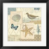Framed Coastal Collage IV