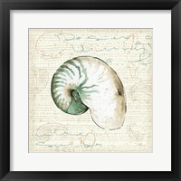 Framed Ocean Prints III