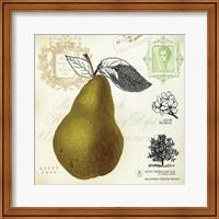 Framed Pear Notes