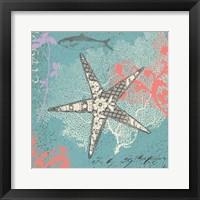 Framed Starfish on Aqua
