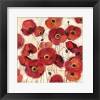 Framed Bold Poppies
