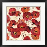 Framed Bold Poppies