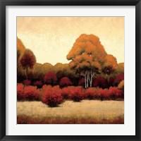 Framed Autumn Forest I