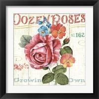 Framed Rose Garden II