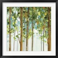 Framed Forest Study II