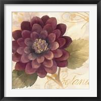 Framed Abundant Floral II