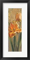Framed Parrot Tulips on Gold I
