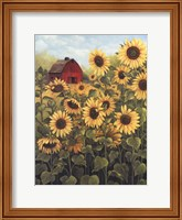Framed Field of Sunflowers
