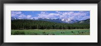 Framed Beaver Meadows Rocky Mountain National Park CO USA
