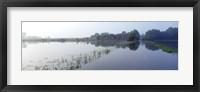 Framed Standing floodwater, Mississippi River, Illinois, USA