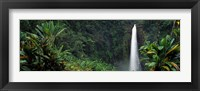 Framed Akaka Falls State Park, Hawaii, USA