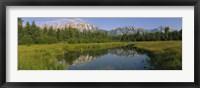 Framed Grand Teton National Park, Wyoming