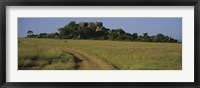 Framed Road passing through a grassland, Simba Kopjes, Road Serengeti, Tanzania, Africa