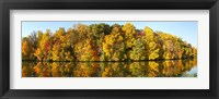 Framed Reflection of trees in a lake, Strawbridge Lake, Moorestown, New Jersey, USA