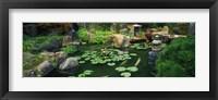 Framed Japanese Garden at University of California