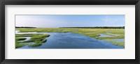 Framed Sea grass in the sea, Atlantic Coast, Jacksonville, Florida, USA