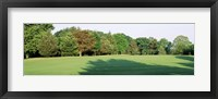 Framed Trees on a golf course, Woodholme Country Club, Baltimore, Maryland, USA