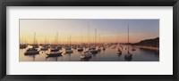 Framed Sunset & harbor Chicago IL USA