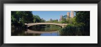 Framed Bridge across a lake, Central Park, New York City, New York State, USA