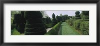 Framed Sculptures formed from trees and plants in a garden, Ladew Topiary Gardens, Monkton, Baltimore County, Maryland, USA