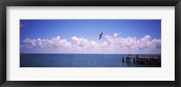 Framed Pier over the sea, Fort De Soto Park, Tampa Bay, Gulf of Mexico, St. Petersburg, Pinellas County, Florida, USA