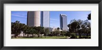 Framed Buildings in a city viewed from a park, Plant Park, University Of Tampa, Tampa, Hillsborough County, Florida, USA