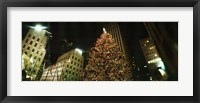 Framed Christmas tree lit up at night, Rockefeller Center, Manhattan, New York State