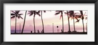 Framed Palm trees on the beach, Waikiki, Honolulu, Oahu, Hawaii