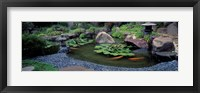 Framed Japanese Garden, University of California, Los Angeles