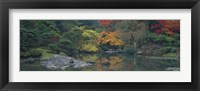 Framed Pond view in the Japanese Garden Seattle WA