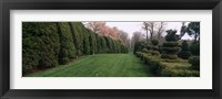 Framed Hedge in a formal garden, Ladew Topiary Gardens, Monkton, Baltimore County, Maryland