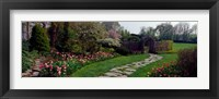 Framed Flowers in a garden, Ladew Topiary Gardens, Monkton, Baltimore County, Maryland, USA