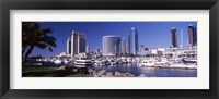 Framed Boats in a Harbor, San Diego, California