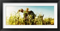 Framed Scarecrow in a corn field, Queens County Farm, Queens, New York City, New York State, USA