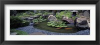 Framed Japanese Garden, University of California, Los Angeles