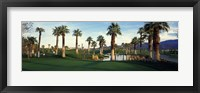 Framed Palm trees in a golf course, Desert Springs Golf Course, Palm Springs, Riverside County, California, USA