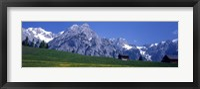 Framed Field Of Wildflowers With Majestic Mountain Backdrop, Karwendel Mountains, Austria