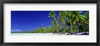 Framed Beach With Palm Trees, Bora Bora, Tahiti
