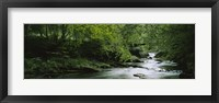 Framed River flowing in the forest, Aberfeldy, Perthshire, Scotland