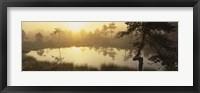 Framed Reflection of trees in a lake, Vastmanland, Sweden