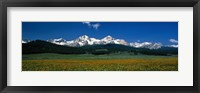 Framed Sawtooth Mtns Range Stanley ID USA