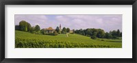 Framed WIne country with buildings in the background, Village near Geneva, Switzerland