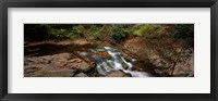 Framed White Water The Great Smoky Mountains TN USA