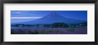 Framed Mount Fuji Japan