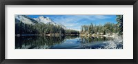 Framed Reflection of trees in a lake, Yellowstone National Park, Wyoming, USA