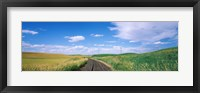 Framed Railroad track passing through a field, Whitman County, Washington State, USA