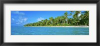 Framed Tetiaroa Atoll French Polynesia Tahiti