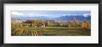 Framed Farm, Rapperswil, Zurich, Switzerland