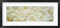 Framed White Rose Petals