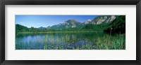 Framed Alpsee Bavaria Germany